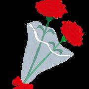 carnation_hanataba